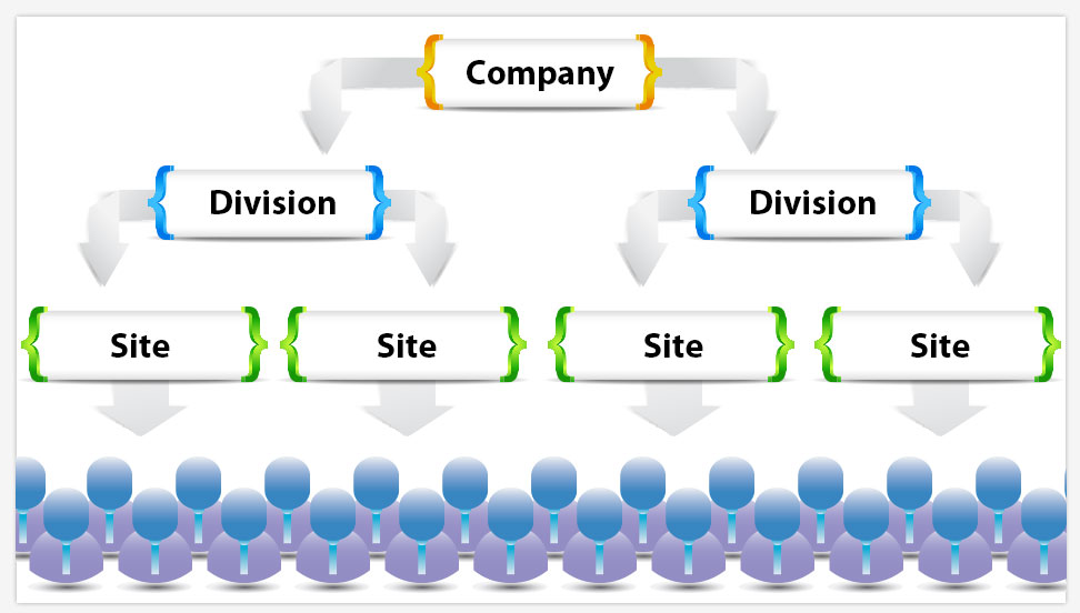 Diagram of company structure