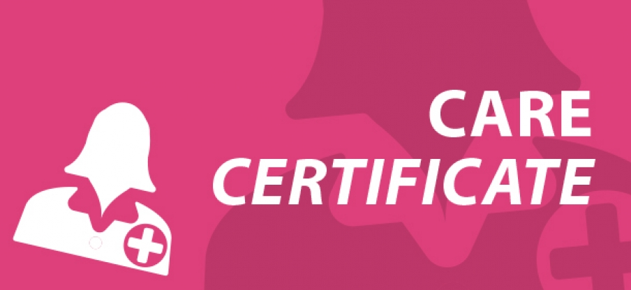 Care Certificate E-learning endorsed by Skills for Care
