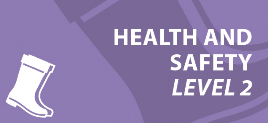 Health and safety level 2 e-learning course